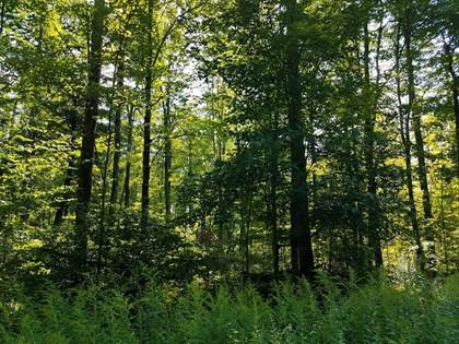 Lots And Land for sale in ELMER NATZKE DRIVE, Merrill, WI, 54452