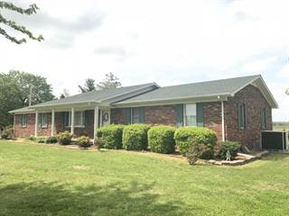 Single Family for sale in 6963 Unionville Road, Brookport, IL, 62910