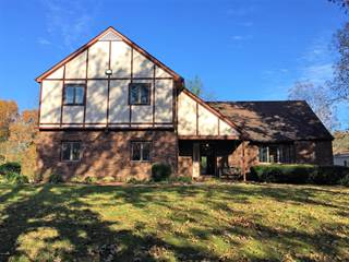 Single Family for sale in 14208 Linwood Lane, Woodlawn, IL, 62898