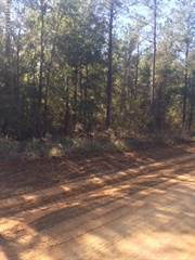 Land for sale in 0 COX Road, Two Egg, FL, 32460