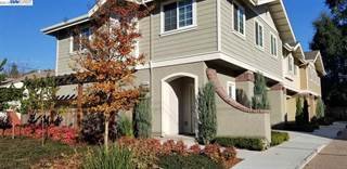 Townhouse for rent in 20026 San Miguel Ave, Castro Valley, CA, 94546