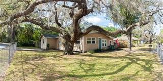 Single Family for sale in 1313 E NEW ORLEANS AVENUE, Tampa, FL, 33603