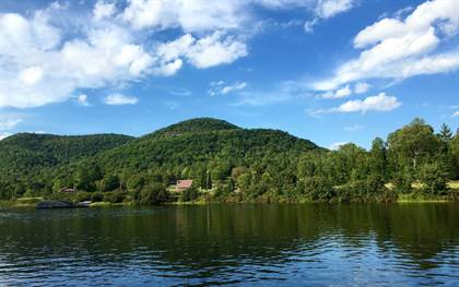 Farm And Agriculture for sale in 1715 Big Brook Road, Indian Lake, NY, 12842