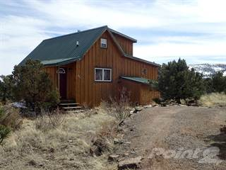 Residential Property for sale in 446 Hidden Valley Rd, South Fork, CO, 81154