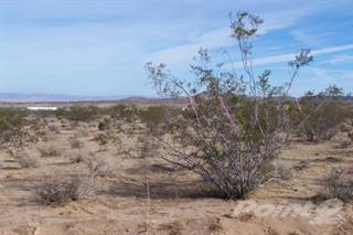 Residential Property for sale in Ripon Avenue - APN 9629-112-06-0000, Yucca Valley, CA, 92284