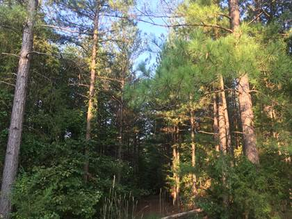 Farm And Agriculture for sale in Tract 46 Mountain View Shores DR, Pittsville, VA, 24139