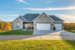 Single Family for sale in 3227 Big Piney, Festus, MO, 63028