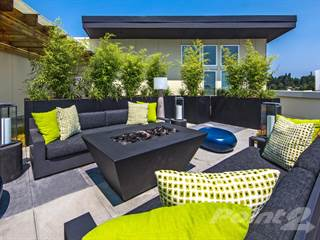 Apartment for rent in Origin, Seattle, WA, 98125