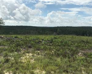 Land for sale in 1145 Maddox Rd., Greater Alford, FL, 32448