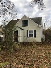 Single Family for sale in 10532 Park Heights Rd, Cleveland, OH, 44104