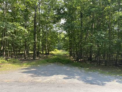 Lots And Land for sale in 1020&1016 Acacia & Sierra Dr, Hawley, PA, 18428