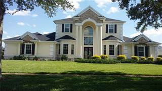 Single Family for sale in 2605 COASTAL RANGE WAY, Lutz, FL, 33559