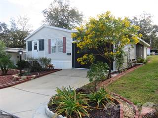 Residential Property for sale in 231 Prince Drive, Leesburg, FL, 34748