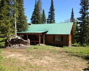 Land for sale in TBD Shingle Creek Rd, Encampment, WY, 82325