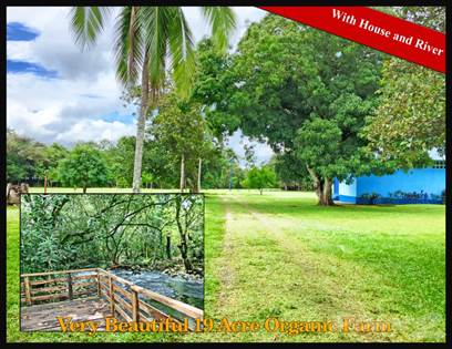 For Sale: Very Beautiful 19 Acre Organic Farm with House & River, Dolega,  Chiriquí - More on POINT2HOMES com