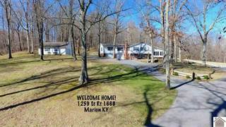 Single Family for sale in 1259 State Route 1668, Marion, KY, 42064