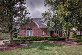 Single Family for rent in 21865 DUNNABECK Court, Novi, MI, 48374