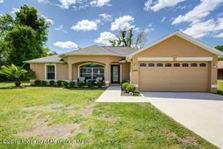 Single Family for sale in 10074 Vancouver Road, Spring Hill, FL, 34608