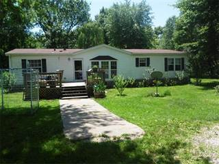 Single Family for sale in 15377 Bishop Drive, Gillespie, IL, 62033