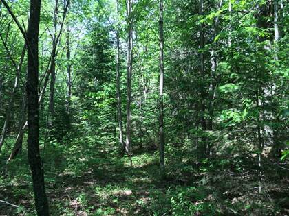 Lots And Land for sale in 0 Kenny Rd, Lot 5, Duane, NY, 12953