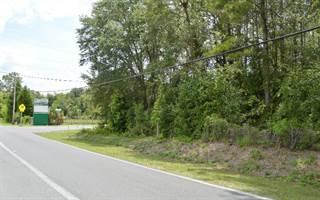 Multi-family Home for sale in WALKER AVENUE-LOT A, Live Oak, FL, 32064