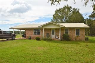 Single Family en venta en 2014 Jewel Road, Alford, FL, 32431