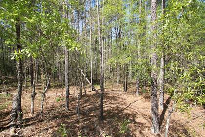 Lots And Land for sale in 0 Beechtree Acres Road, Gibson, GA, 30810