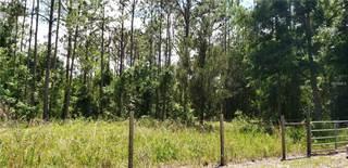 Land for sale in 16216 BEARLE ROAD, Alafaya, FL, 32828
