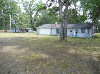 Single Family for sale in 955 E 11 mile Road, Irons, MI, 49644