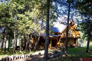 Single Family for sale in 7891 County Road 25, Powderhorn, CO, 81243