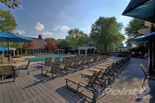 Apartment for rent in Bell Walkers Crossing - The Mimosa, Knoxville, TN, 37923