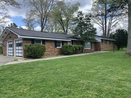 Residential Property for sale in 40 Lick Creek Road, Marshes Siding, KY, 42631