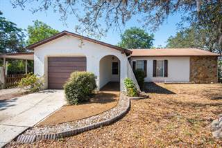 Single Family for sale in 11438 Patch Street, Spring Hill, FL, 34609