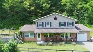 Single Family for sale in 71 Slatelick Branch Rd, Louisa, KY, 41230