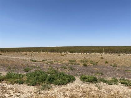 Lots And Land for sale in TBD TBD, Sierra Blanca, TX, 79851