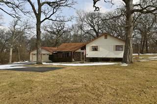 Single Family for sale in 7273 N 16000 Road E, Grant Park, IL, 60940
