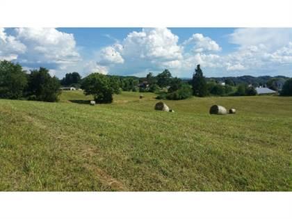 Lots And Land for sale in Tbd Watauga Road, Abingdon, VA, 24211