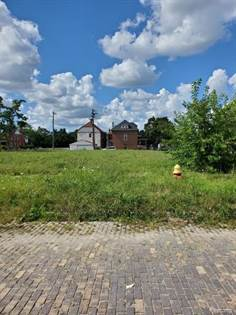 Lots And Land for sale in 808 VIRGINIA PARK, Detroit, MI, 48202