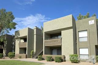 Apartment for rent in Hayden Park - 1 bedroom Renovated, Scottsdale, AZ, 85251