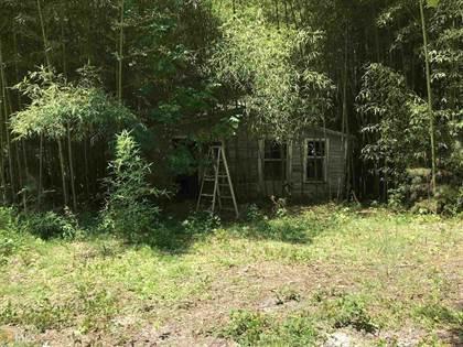 Residential Property for sale in 2481 Dallas Acworth, Dallas, GA, 30132