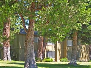 Apartment for rent in Sierra Vista - Northstar, South Lake Tahoe, CA, 96150