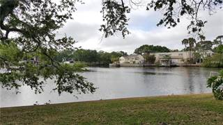 Condo for sale in 4805 ALT 19 624, Palm Harbor, FL, 34683
