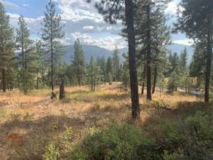 Lots And Land for sale in Lot 23 PALMER, Chewelah, WA, 99109