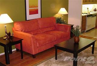 Apartment for rent in Amber Apartments - Swiss 1- Standard, Royal Oak, MI, 48073