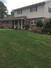 Single Family for sale in 169 Mariella Drive, Owingsville, KY, 40360