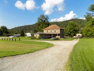 Single Family for sale in 20754 Hwy 23, Louisa, KY, 41230