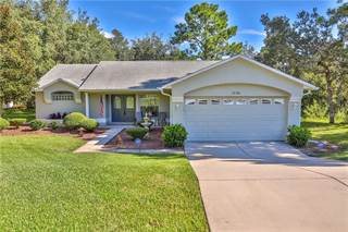 Single Family for sale in 10381 CANYON POND COURT, Weeki Wachee, FL, 34613