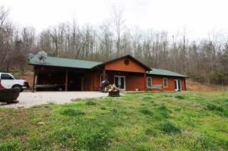 Single Family for sale in HCR1 Box 174D, Van Buren, MO, 63965