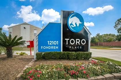 Apartment for rent in 12101 Fondren Rd, Houston, TX, 77035