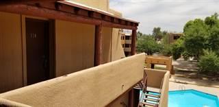 Condo for sale in 1810 E Blacklidge Dr 514, Tucson, AZ, 85719